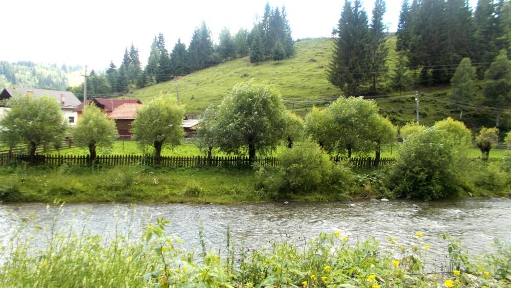 Pe apa Moldovei