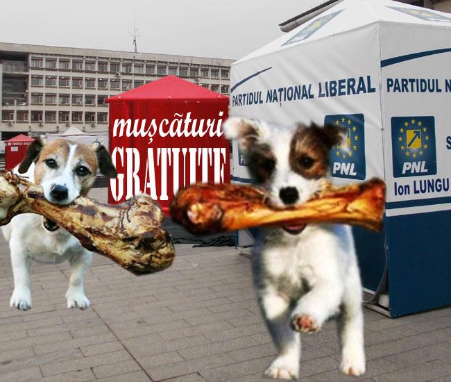 Noii candidaţi: Vrem un ciolan cinstit şi nu tot bugetul municipal, ca alţii!...