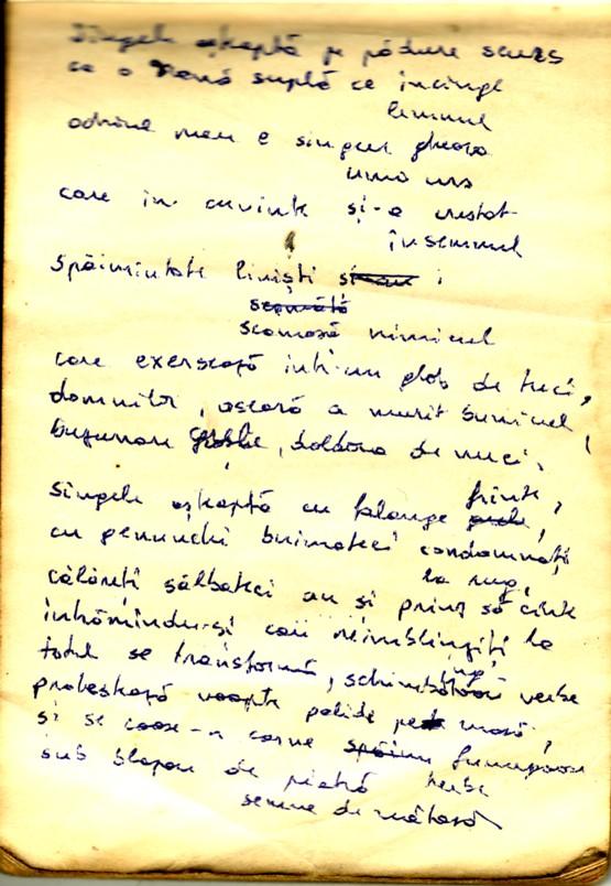 Note din carnet 2