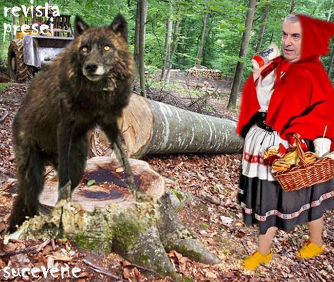 Lupul: Scufiţă Tăriceanu, eu sunt lup lup, dar poţi încerca cu o Cioată!...
