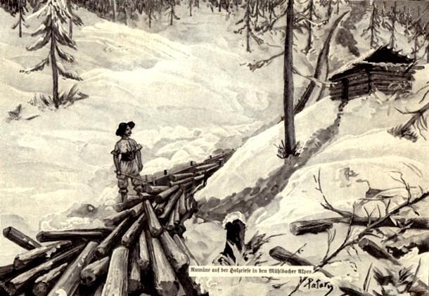 Tăietorul (român) de lemne