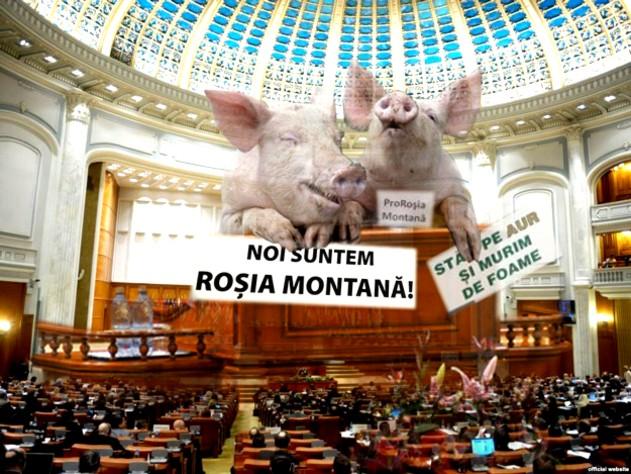 Parlamentarii români, în frunte cu Valeriu Zgonea, încep să aibă viziuni despre necesitatea locurilor de muncă doar atunci când se pune problema viitorului Roşiei Montana