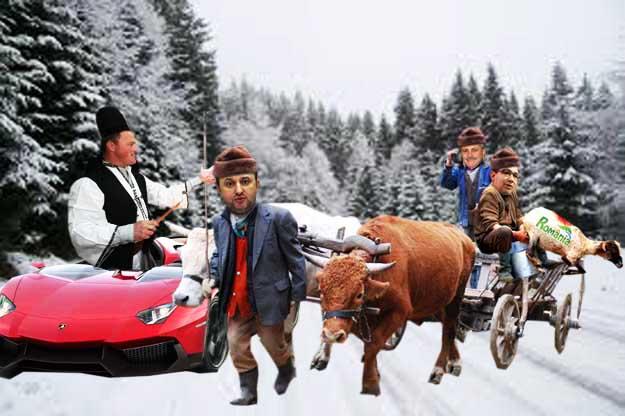 Ciobanul Ghiţă: Dom' Ponta, dacă ai s-o tunzi şi mulgi întruna, o să-ţi pchiară Mioriţa!