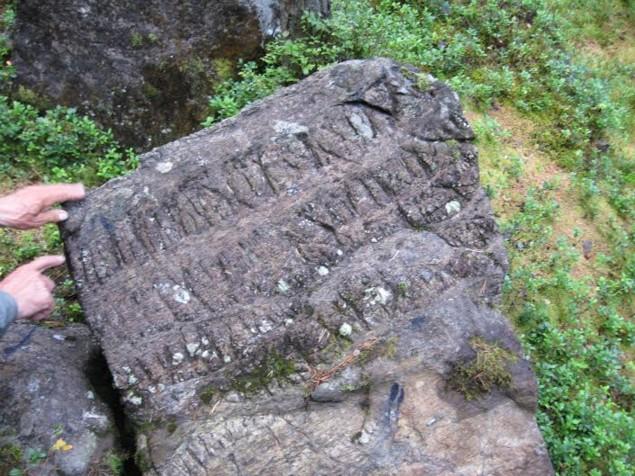 Piatra de pe Tatarca 1