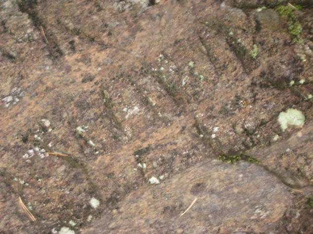 Piatra de pe Tatarca 2