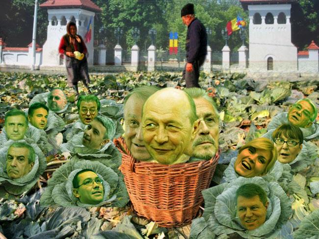 Românul: Nevastă, proastă recoltă avem în anul ăsta: varză, varză şi iar varză!...