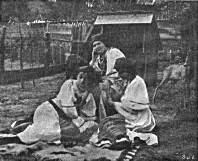 Românce din Bucovina