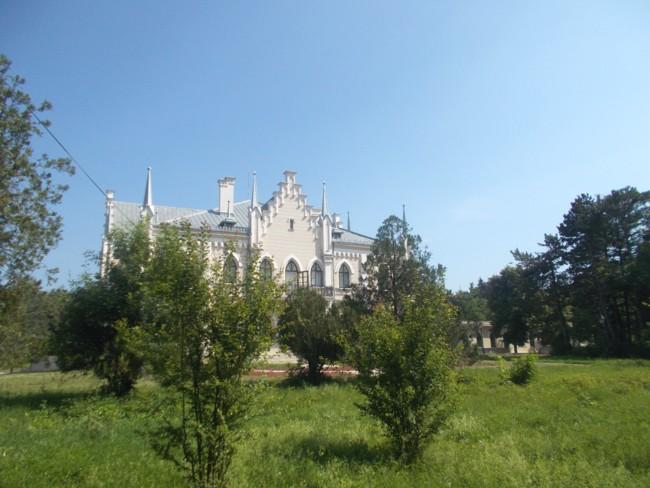 Ruginoasa Castel 1