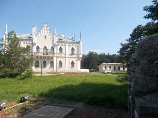 Ruginoasa Castel 2