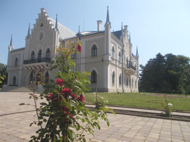 Ruginoasa Castel 5