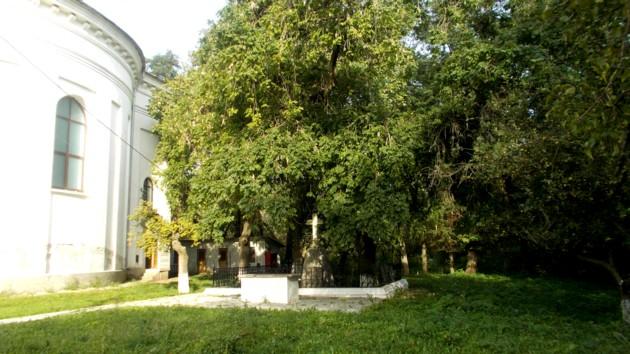 Mormântul lui Cuza, zvârlit în afara ctitoriei bunicului său
