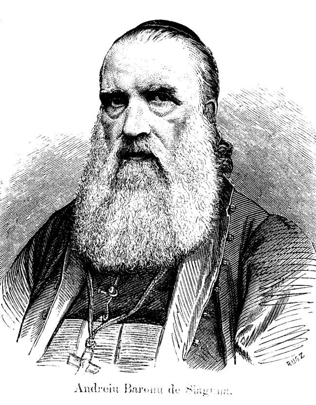 Saguna Andrei Familii 19 din 1865