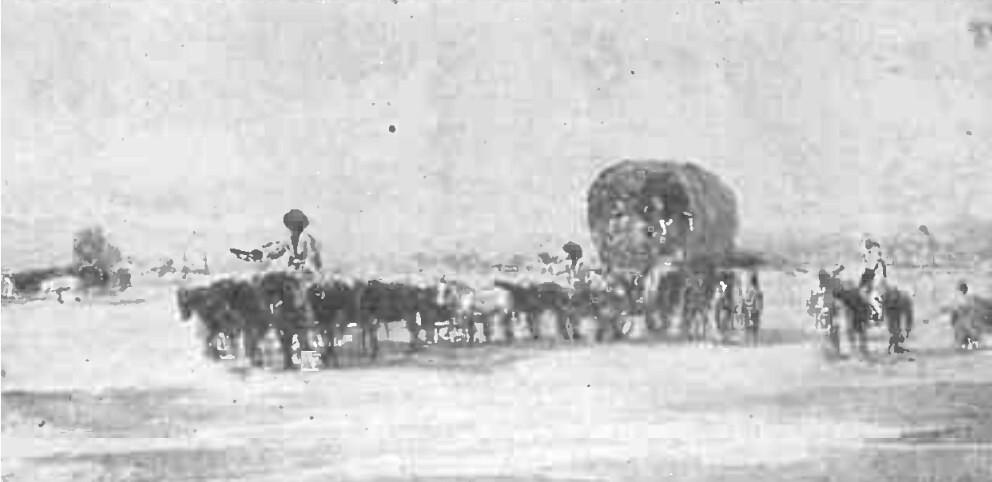 Satmary Chervan CLA 1909 p 353