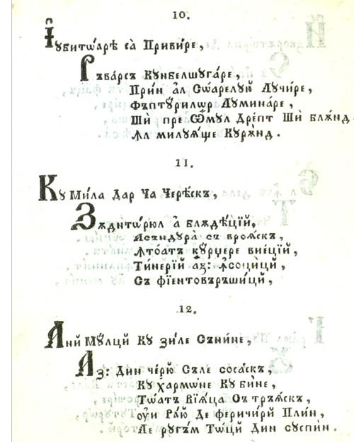 Scavinschi 4