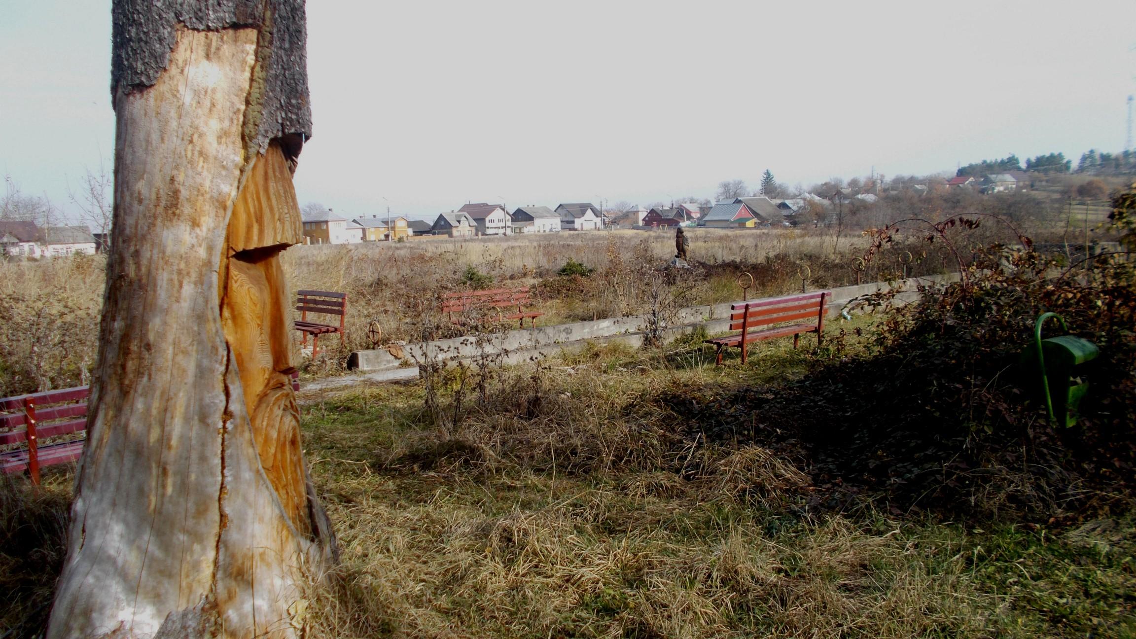 """""""Ruinele"""" parcului Dr. Poras din Solca"""