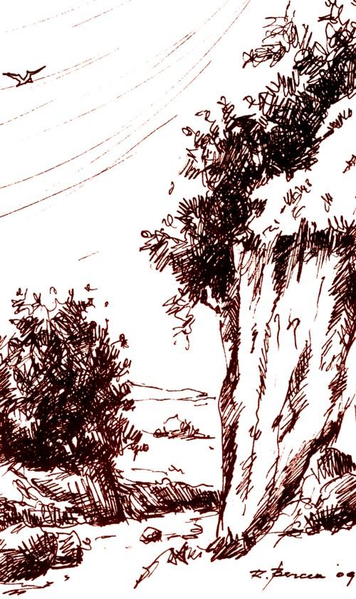 Ziua de după Iisus - desen de Radu Bercea