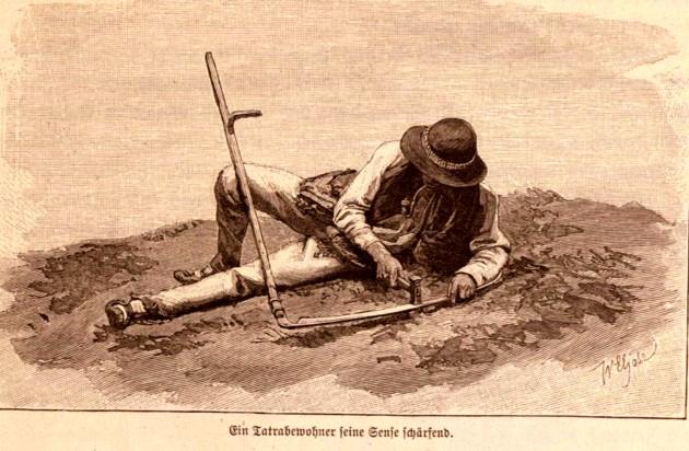 Tipologii galiţiene: Cosaş din Tatra, p. 823
