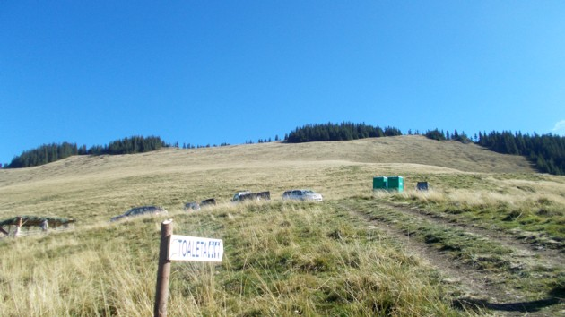 Budele ecologice, singurele din Pojorâta