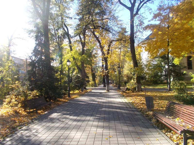Toamna 3 Parc
