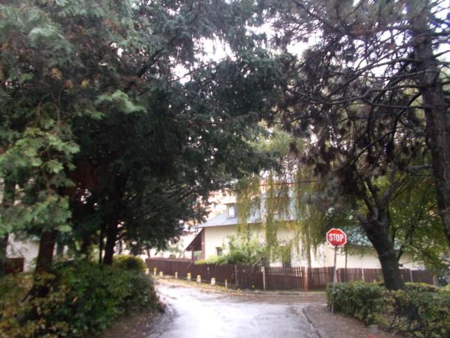 Toamna ploioasa 4