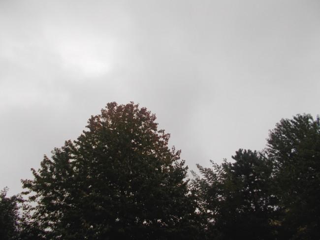 Toamna ploioasa 6