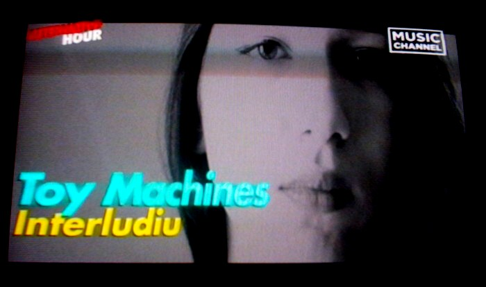 Toy Machines 10a