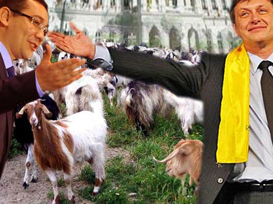 Victor Ponta: Uite cum facem, dragă Crin: tu le paşti, iar eu împart caşcavalul!