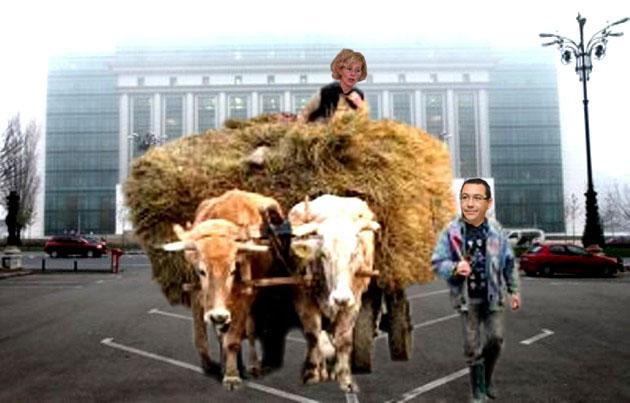 Rozalia Biro: Ponta-baci, boii ăştia lucrează în Ministerul Culturii de la Revoluţie?