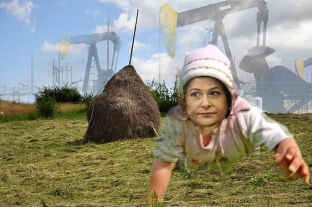 """Ministrul Rovana Plumb: """"Mă cam încearcă problema gazelor... de şist!""""."""
