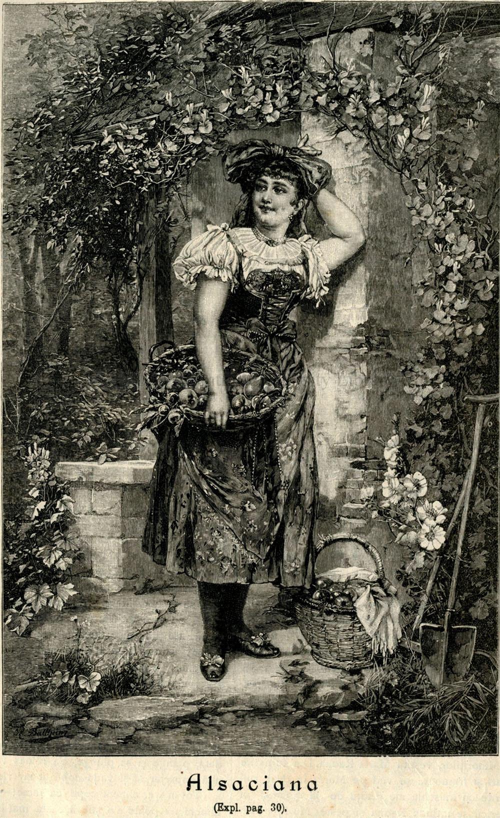 O ilustrație din VATRA: Alsaciana