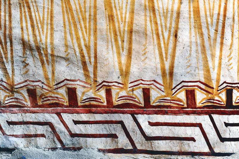 Gammadioane echinocţiale, la Mănăstirea Humorului
